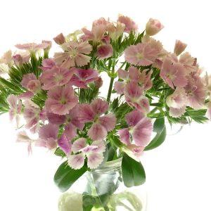 Les fleurs en boutique